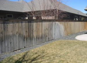 Cleaning Black Spots From A Cedar Fence